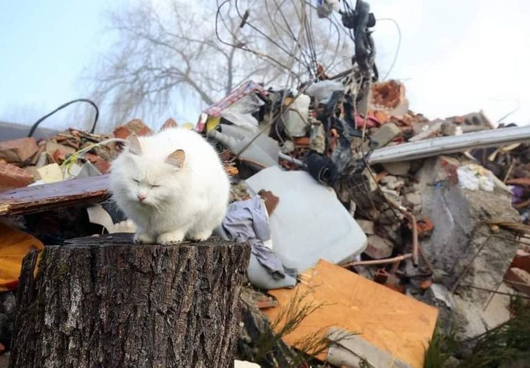 AardbevingKroatie202105