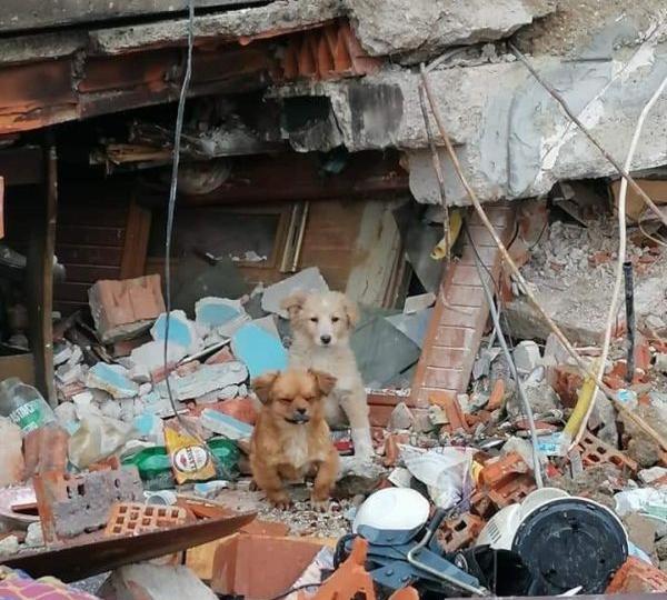 AardbevingKroatie202106